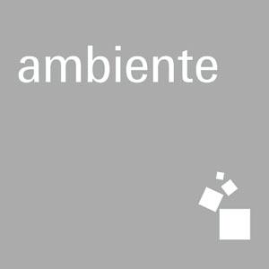 Logo Ambiente grey